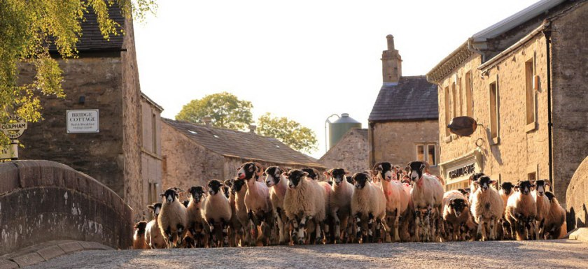 visit the yorkshire dales